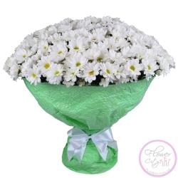 Хризантема белая Ромашковая