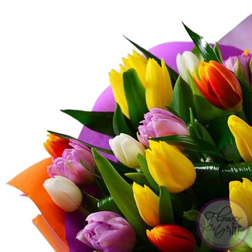 """Букет Тюльпанов """"Амстердам"""" 35 шт."""
