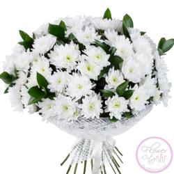 Хризантема белая Зембла