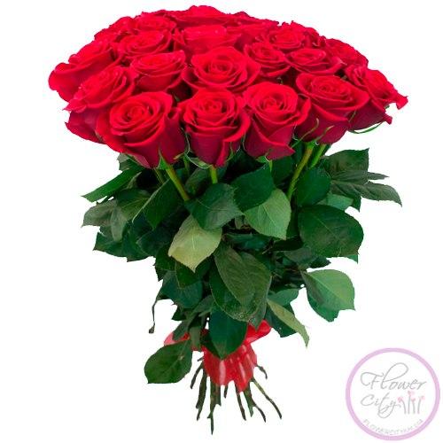 25 Роз Freedom 80см (Элитная Голландская Роза)
