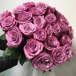25 сиреневых роз