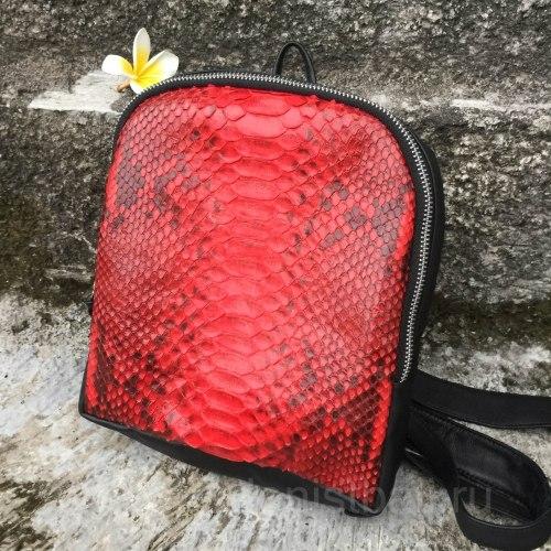 Рюкзак из натуральной кожи питона SIMONE черный с красным