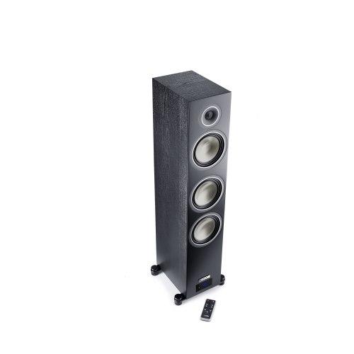 Напольная акустика Canton Chrono C 500 Aktive SET