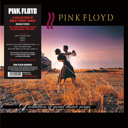 Виниловая пластинка PINK FLOYD - A COLLECTION OF GREAT DANCE SONGS (180 GR)