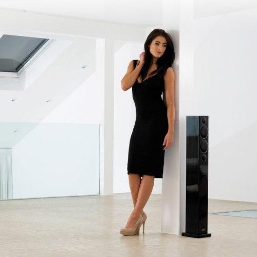 Напольная акустика Monitor Audio Radius 270