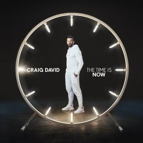 Виниловая пластинка CRAIG DAVID - THE TIME IS NOW (2 LP)