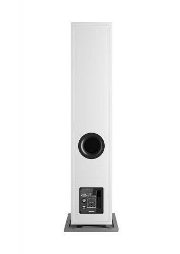 Напольная активная акустика DALI OBERON 7 C