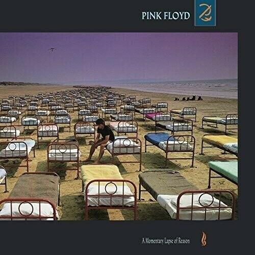 Виниловая пластинка PINK FLOYD - A MOMENTARY LAPSE OF REASON (180 GR)