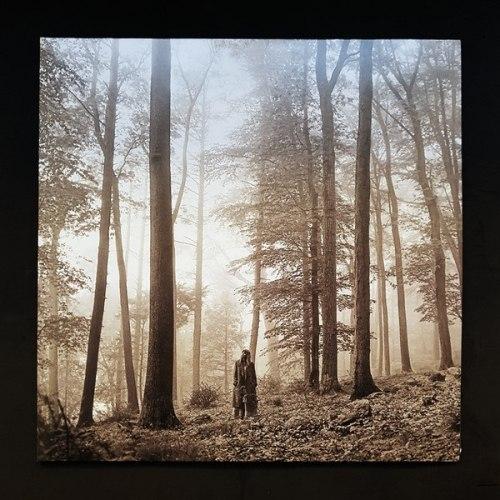 Виниловая пластинка TAYLOR SWIFT - FOLKLORE (2 LP)