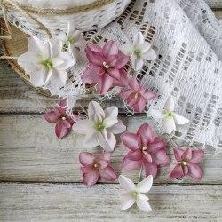 Гортензии Дуболистные, розово-бордовые, Pastel Flowers