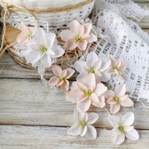 Гортензии Дуболистные, пудрово-персиковые, Pastel Flowers