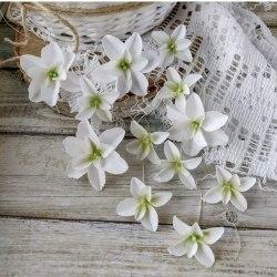 Гортензии Дуболистные, белые, Pastel Flowers