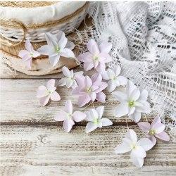 Гортензии Дуболистные, бело-розовые, Pastel Flowers