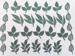 Набор вырубки Leaves-01