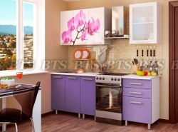 Орхидея 1,6 кухня BTS