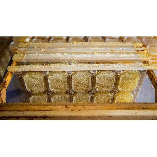 """Емкость для сотового меда """"Панский сот"""" комплект под магазинную рамку (435х145 мм)"""