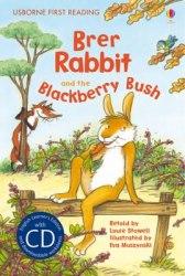 Usborne First Reading 2 Brer Rabbit and the Blackberry Bush + CD