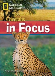 Footprint Reading Library 2200 B2 Cheetahs in Focus!