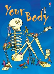Beginners: Your Body