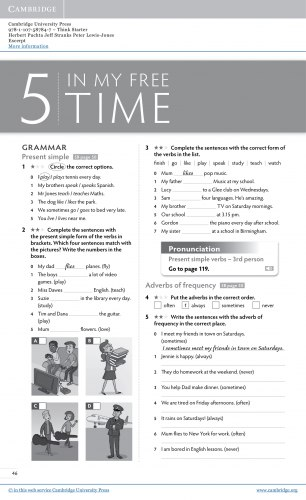 Think Starter Workbook and Online Practice / Робочий зошит
