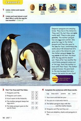 Wonderful World (2nd Edition) 3 Student's Book / Підручник для учня