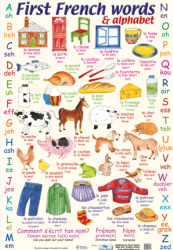 First French Words and Alphabet / Плакат
