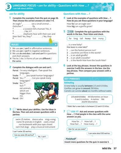 English Plus 1 (2nd Edition) Student's Book / Підручник для учня