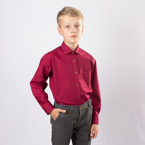 Сорочка для мальчиков младшей школьной группы Озорник 533022И