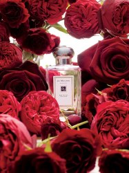 Jo Malone™ 'Red Roses' Cologne