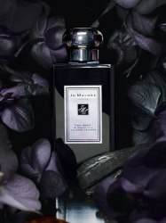 Jo Malone™ 'Dark Amber & Ginger Lily' Cologne Intense 100ml