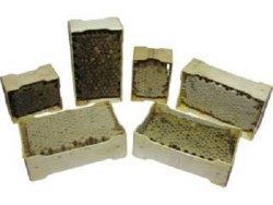 Деревянная рамка для секционного мёда (67х115х37 с прорезью)
