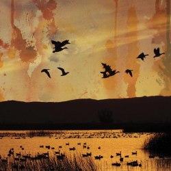 STELLAR DESCENT - ...fading... CD Atmospheric Metal