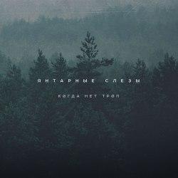 ЯНТАРНЫЕ СЛЁЗЫ - Когда нет троп CD Doom Metal