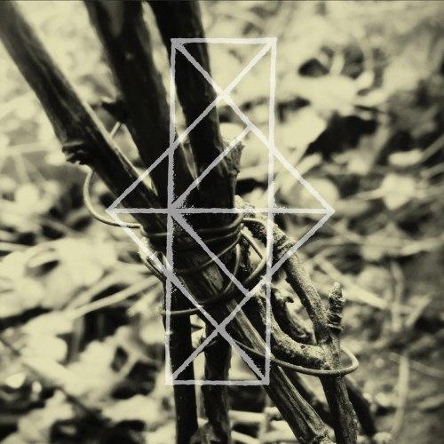 COMMON EIDER, KING EIDER - Shrines For The Unwanted, Respite For The Cast Aside Digi-CD Experimental Music