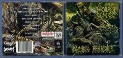 MACABRE DEMISE - Homicidal Parasites CD Brutal Death Metal