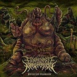 FERMENTED MASTURBATION - Perverted Slamicide MCD Brutal Death Metal