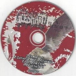 FLESHART - Art Brut MCD Brutal Death Metal