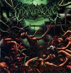 GASTRORREXIS - The Taste Of Putrefaction CD Brutal Death Metal