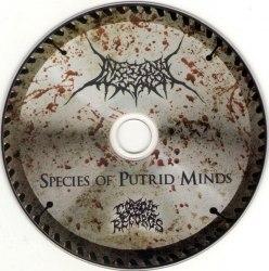 INTESTINAL LACERATION - Species Of Putrid Minds MCD Brutal Death Metal