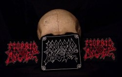 MORBID ANGEL - Red Logo Нашивка Death Metal