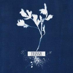 "FEIGUR / LUSTRE - Feigur / Lustre 7""EP Atmospheric Metal"