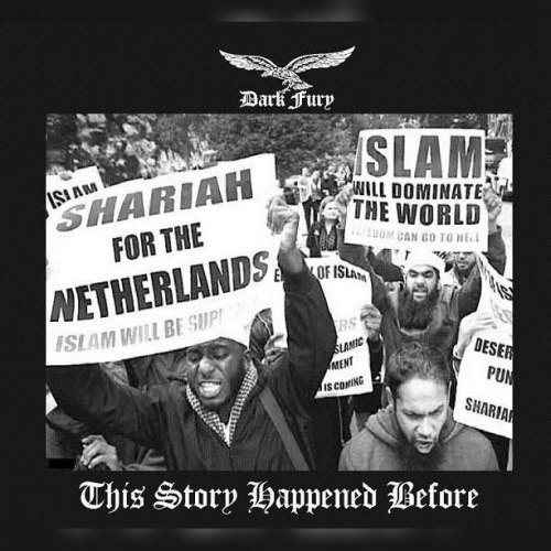 DARK FURY - This Story Happened Before CD NS Metal