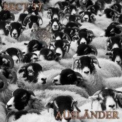 SECTION 37 - Auslander Digi-CD Experimental Music