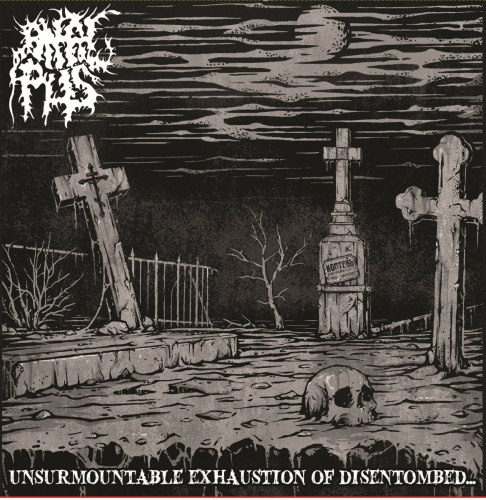 ANAL PUS - Unsurmountable Exhaustion Of Disentombed... CD Brutal Death Metal