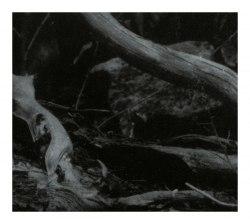 BARREN CANYON - World Of Wounds Digi-CD Atmospheric Metal