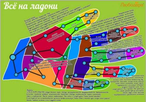 Игра «Всё как на ладони» Любченко Любодара