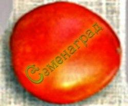Семена томатов Русская тройка - перцевидный, до 300 г, низкорослый, модный. Семенаград - семена почтой