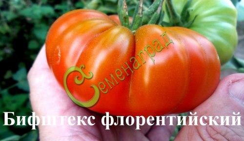 Семена томатов Бифштекс флорентийский, выведен в Италии - сильное растение, среднего роста, с крупными уплощенными ребристыми ярко-красными плодами с высоким содержанием сахара. Семенаград - семена почтой