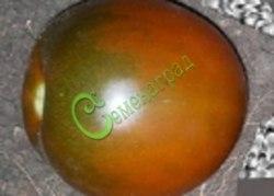 Семена томатов Де борао черный - 1 уп.-20 семян - высокорослый, до 100 г, урожайный, популярный. Семенаград - семена почтой