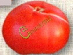 Семена томатов Египетский великан - 1 уп.-20 семян - высокорослый, до 1 кг, ранний, розовый, очень хорош. Семенаград - семена почтой
